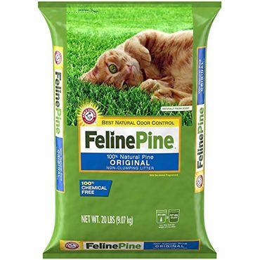 Feline Pine Review