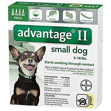 Advantage II for Dogs Review