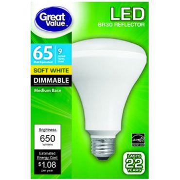 Great Value LED Light Bulb Review